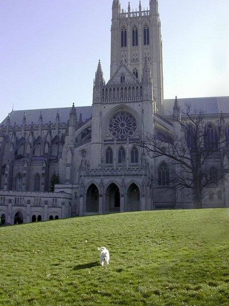 Harm_NationalCathedral_DC.jpg
